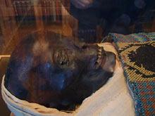 San Lazzaro - mumia / fot. Jan Śliwa