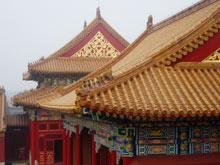 dachy pawilonów