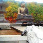 Wspomnienia z Korei