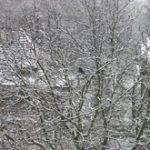 Ś jak śnieg