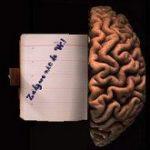 Zaśniedziały  umysł