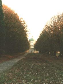 Aleja lipowa, zamek w Podhorcach