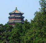 Pośród chińskich ogrodów