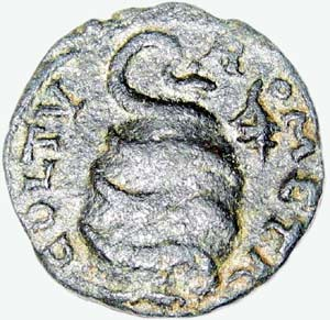 moneta fenicka
