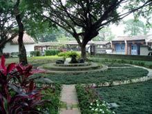 Ogród w Rezydencji Rodziny Lin