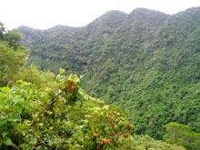 Wąwóz w Wulai