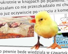 zh_lustracja-zaj.jpg