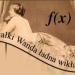 I całki Wanda ładna… Palindromy